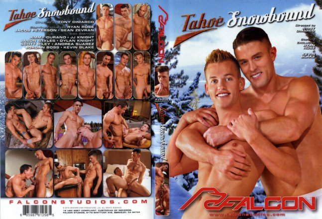 Tahoe: Snowbound Falcon Studio