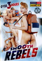 Titty Fucking Paradise 4-Pack (4 Dvds)