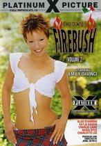 Firebush 2