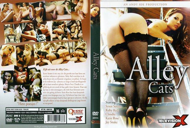 Alley CatsTelevisionX