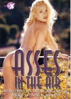 Asses In The Air 1