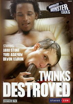 Twinks Destroyed 1