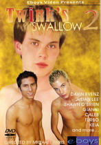 Twink's Swallow 2