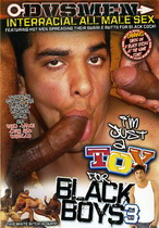 I'm Just A Toy For Black Boys 3