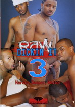 Raw Dickin' It 3: Harder, Deeper, Wetter