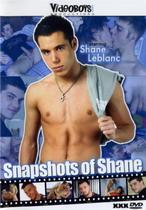 Snapshots Of Shane
