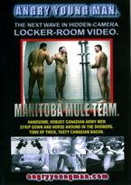 Manitoba Mule Team