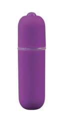 10 Speed Bullet Vibrator: Purple