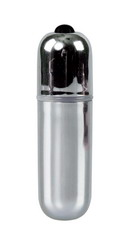 10 Speed Bullet Vibrator: Silver