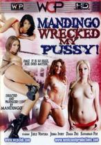 Mandingo Wrecked My Pussy 1
