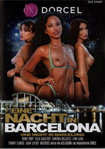 Kinky Hardcore Twinks Box 1 (4 Dvds)