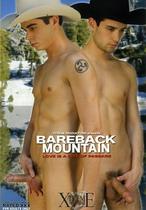 Bareback Mountain: Love Is A Rite Of Passage