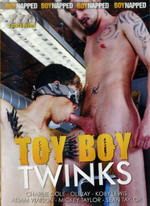 Toy Boy Twinks (3 Dvds)