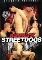 Bareback Streetdogs
