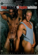 Starlet Vs Steel