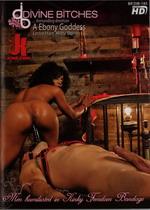 VCA Gold Classics: 80s Group Sex (4 Hours)