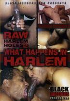 Raw Harlem Holes 2: What Happens In Harlem