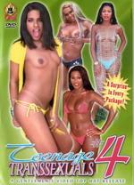 Teenage Transsexuals 04