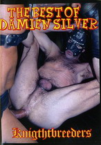 The Best Of Damien Silver