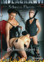 Schmerz Report 2