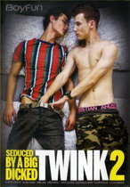 Seduced By A Big Dicked Twink 2