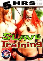Slave Training (5 Hours)