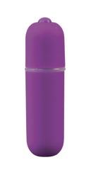 10 Speed Bullet Vibrator: Purple