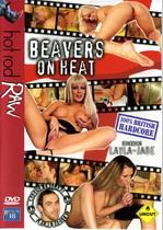 Beavers On Heat